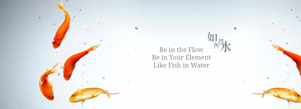 home screen fish
